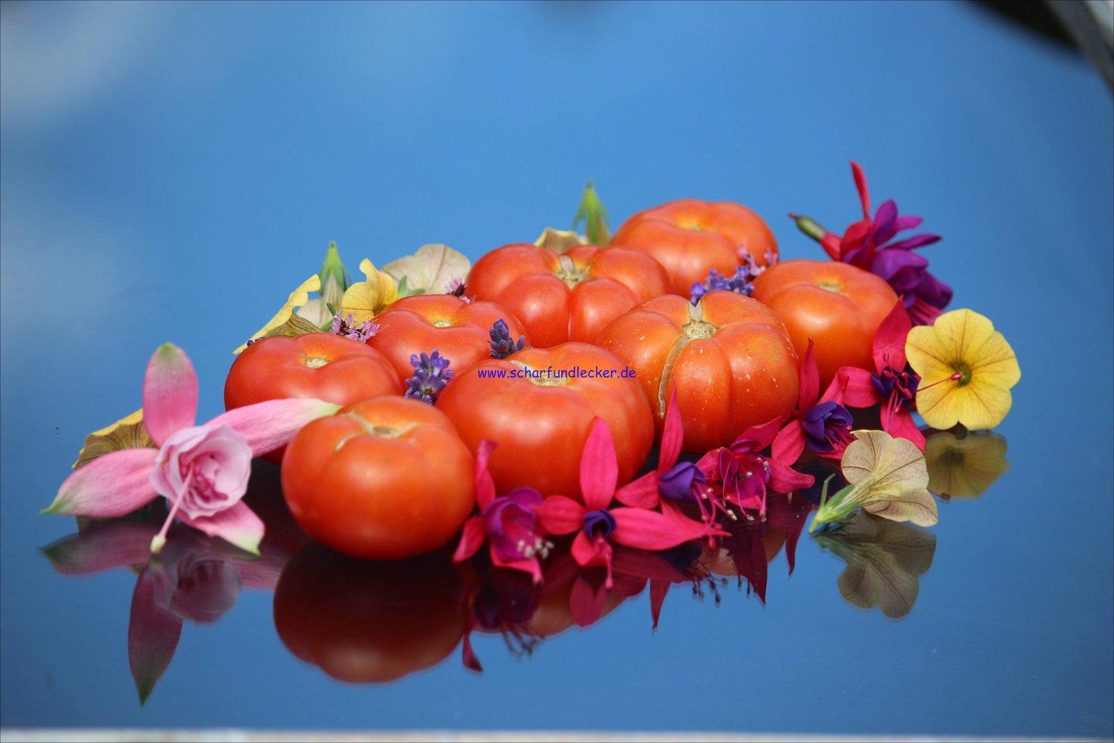 Tomate marglobe tomaten samen saatgut for The 8 boutique b b barcelona