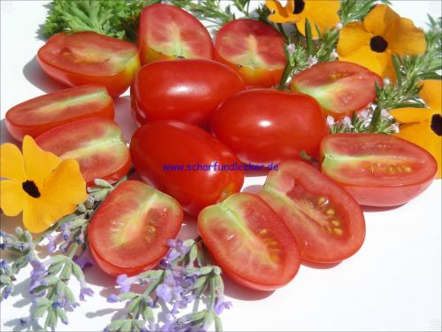 cherry tomaten pflanzen cherry tomaten aus dem garten. Black Bedroom Furniture Sets. Home Design Ideas