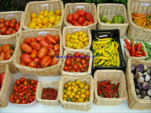 chili samen tomaten samen alte tomatensorten bestellen. Black Bedroom Furniture Sets. Home Design Ideas