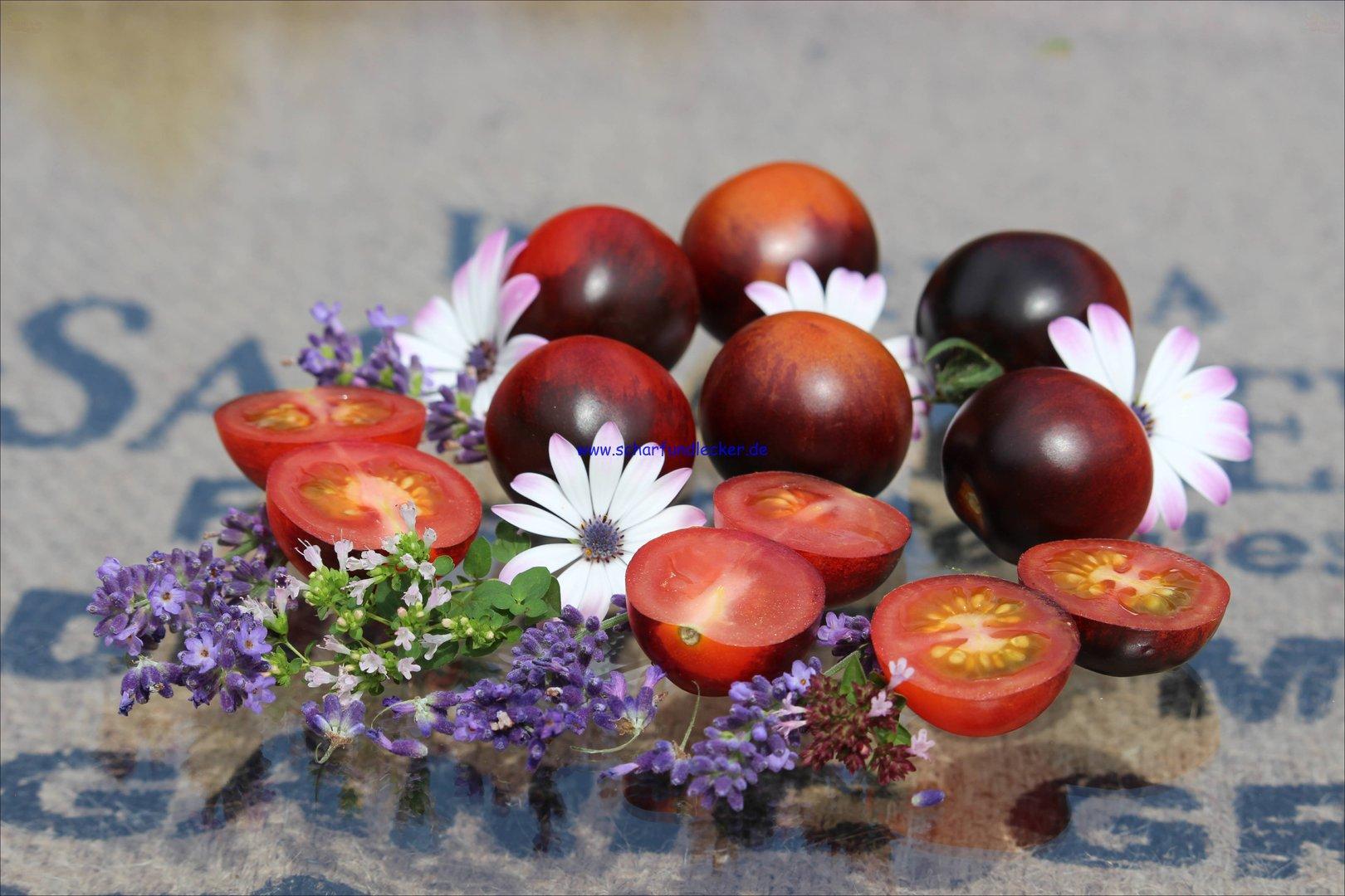 tomaten saatgut kaufen alicante t113 tomaten samen. Black Bedroom Furniture Sets. Home Design Ideas