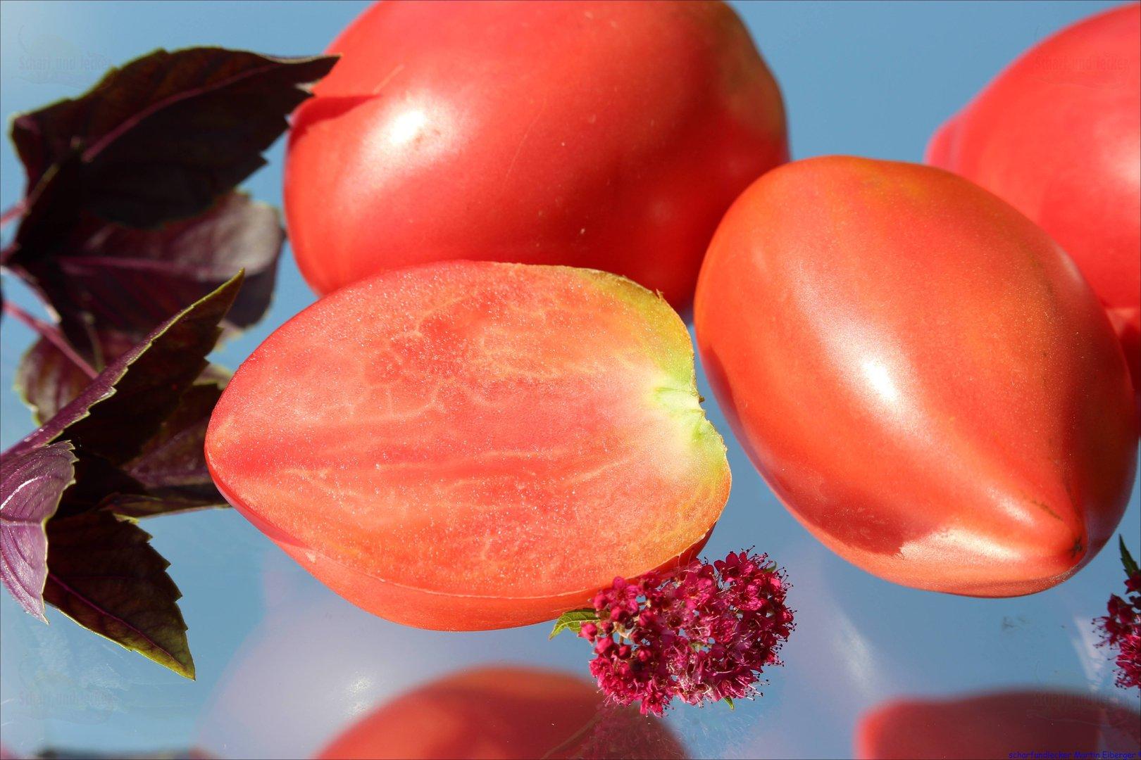moskauer birne alte russische tomate tomatensamen. Black Bedroom Furniture Sets. Home Design Ideas