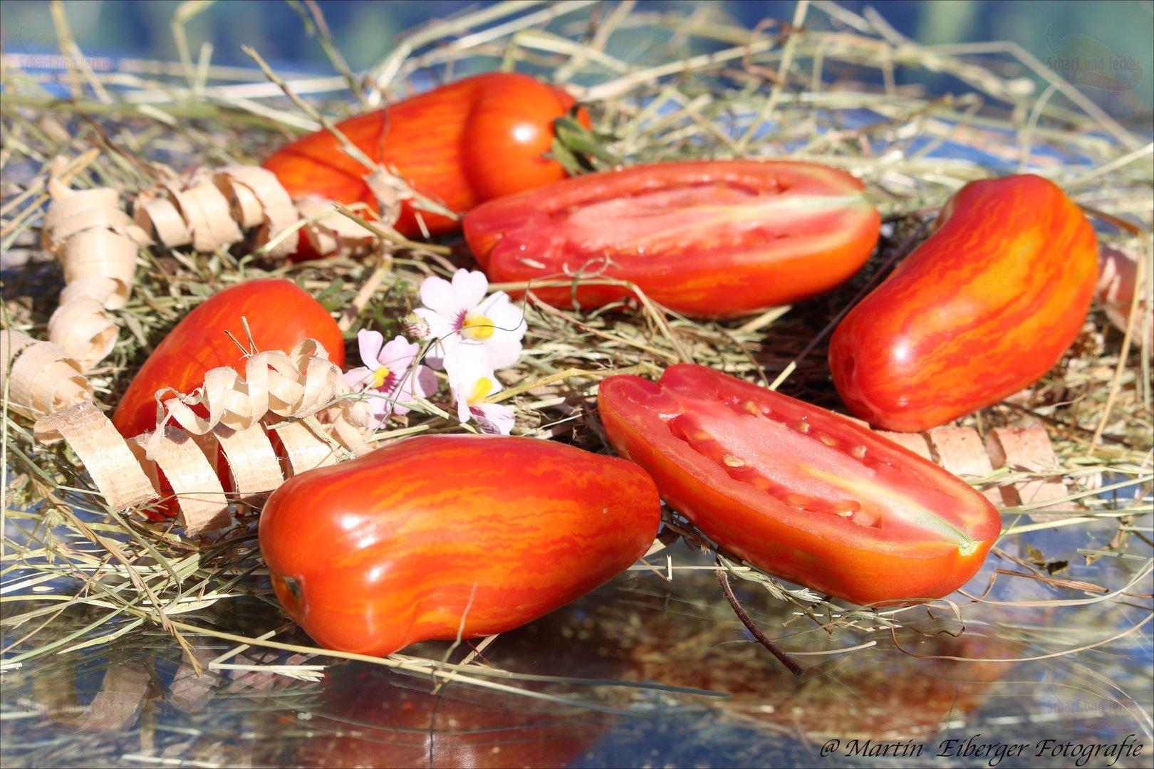 don juan tomate mit walzenf rmigen fr chten tomaten samen. Black Bedroom Furniture Sets. Home Design Ideas