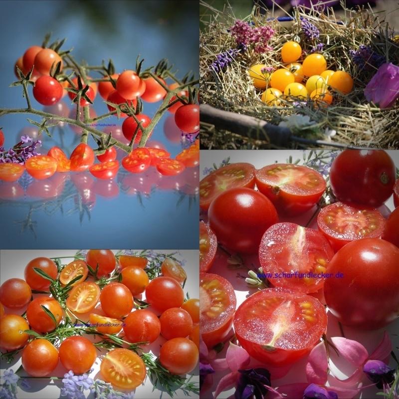 wildtomatensortiment tomatensorten wildtomaten samen. Black Bedroom Furniture Sets. Home Design Ideas